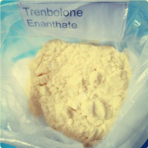 CAS 315-37-7 Yellow Steroid Powder Trenbolone Enanthate for Bodybuilding