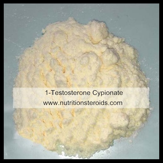Raw Steroid Powders Testosterone Steroids Testosterone Cypionate Muscle Building
