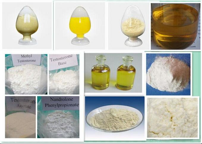 Pure Anabolic Steroids Testosterone Blend , Testosterone Sustanon 250 For Bodybuilding
