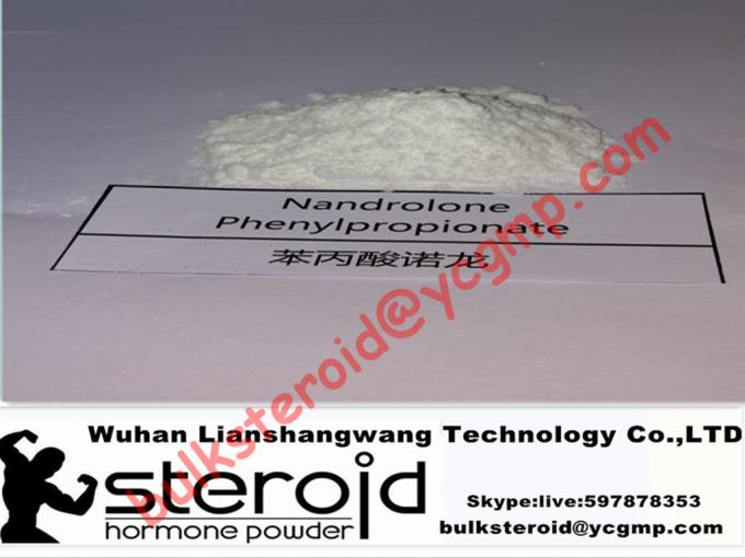 Durabolin Raw Steroid Powders Anabolic Bulking Steroid NPP / Nandrolone Phenylpropionate