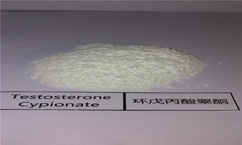 Bodybuilding Injectable Testosterone Cypionate Steroid Cypoject 250 CAS 58-20-8
