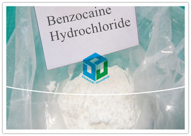 China Narcotic Benzocaine Hydrochloride Local Anesthetic Drugs pain killer powder supplier