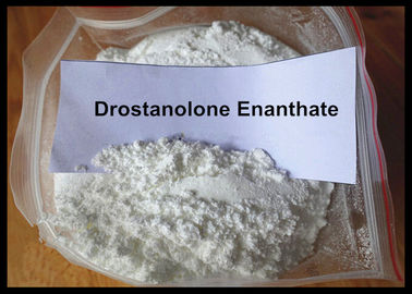 China Masteron Enanthate Powder Anabolic Steroid Drostanolone Enanthate For Cutting Cycle supplier