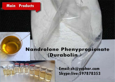 China Durabolin Raw Steroid Powders Anabolic Bulking Steroid NPP / Nandrolone Phenylpropionate supplier