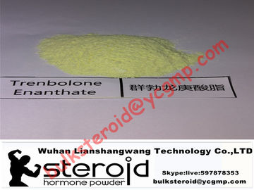 China Trenbolone Enanthate Powder Muscle Gain Steroid Tren E / Parabola For Fat Loss supplier