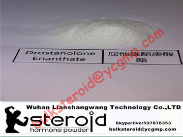 China Drostanolone Enanthate / Masteron Enanthate White Powder Fat Burning Steroids 472-61-1 supplier