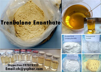 China Trenbolone Enanthate Parabola Trenbolone Acetate Steroid Injectable Mucle Gai supplier