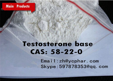 China Anabolic Steroids Testosterone Base / Testosterone No Ester Pharmaceutical Raw Material supplier