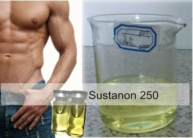 China Anabolic Injectable Steroids Sustanon 250 mg / ml Blend oil For Cutting Cycle supplier