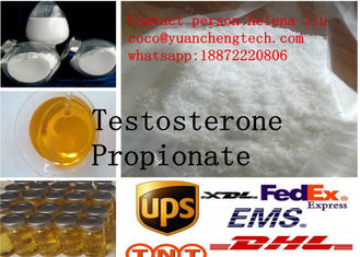 China Steroids Hormone White Powder Test Propionate Injectable for Body Building supplier