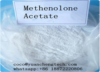 China CAS 434-05-9 Legal Injectable Steroids Methenolone Acetate Primobolone Powder supplier