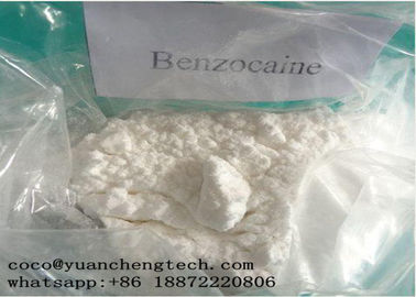 China CAS 94-09-7 Local Anesthetic Drugs Benzocaine Powder High Purity GMP ISO Certification supplier