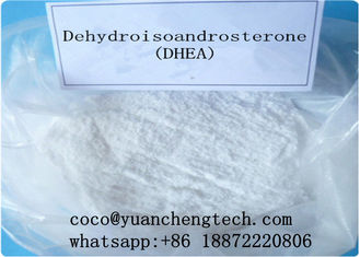 China DHEA Raw Steroids Powder Dehydroisoandrosterone DHEA 53-43-0 supplier