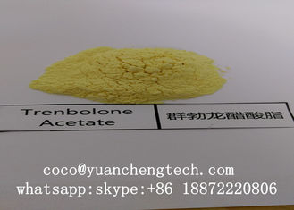 China 10161-34-9 Trenbolone Acetate Steroid Tren A Revalor-H Finaplix Trenbolone Acetate supplier