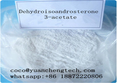 China DHEA Dehydroisoandrosterone 3-acetate Raw Steroid Powders Improve Sexual Function 853-23-6 supplier