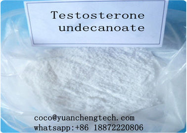 China Test U Testosterone Undecanoate Semi Finished For Body Building CAS 5949-44-0 supplier