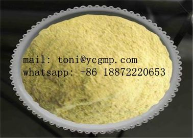 China CAS 315-37-7 Yellow Steroid Powder Trenbolone Enanthate for Bodybuilding supplier