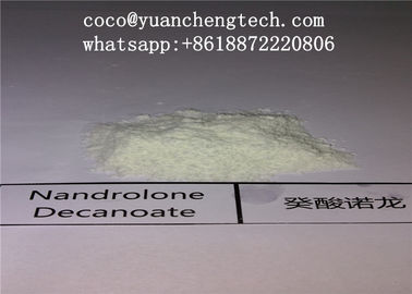China Bodybuilding Nandrolone DECA Durabolin Powder Anabolic Steroid DECA / Nandrolone Decanoate supplier