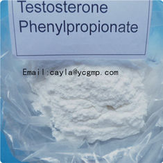 China Bodybuilding Testosterone Phenylpropionate 99% High Purity CAS 1255-49-8 supplier