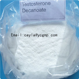 China Factory Direct Sale Testosterone Steroids Gym Equipment Testosterone Decanoate supplier