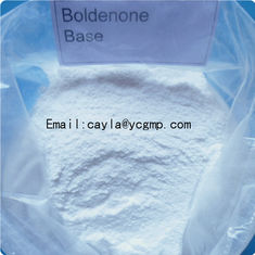 China Growth Hormone Powder Boldenone Base / Muscle Gain Steroids ISO SGS Certification supplier