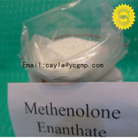 China CAS 303-42-4 Methenolone Enanthate Steroids Male Sex Hormones White Crystalline Powder supplier