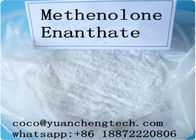 China Anabolic Masteron Primobolan Steroids Injections Methenolone Enanthate Primobolan For Gym Users factory