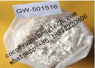 China Ultimate Endurance Enhancer SARM Powder GW-501516 For Burning Fat And Bodybuilding factory