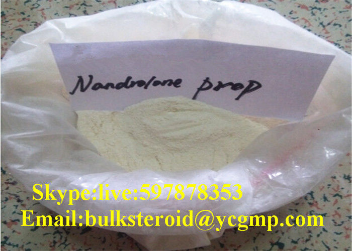 NPP Popular Injectable Cutting Cycle Steroids Nandrolone