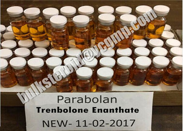 China Bodybuilding USP Injectable Steroids Trenabol 200 Trenbolone Enanthate 200mg/ml distributor
