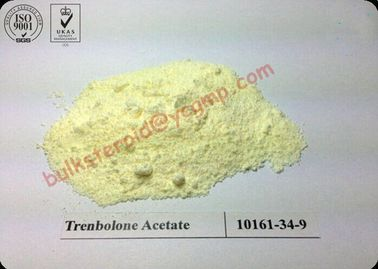 China Superior Trenbolone Acetate Steroid Powder Tren A Steroid Raw Powder distributor