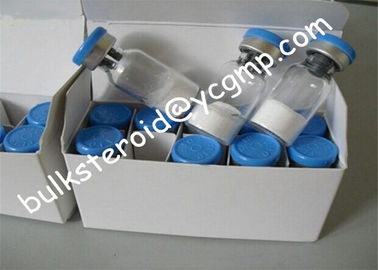 China Human Growth Peptide HGH Fragment 176 - 191 , Loss Weight Bodybuilding Peptides distributor
