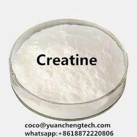 China Occurring Amino Acid Muscle Fitness Supplements White Powder Creatine To Gain Muscle Mass distributor