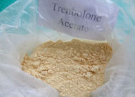 99% Purity Injectable Trenbolone Acetate Steroid Powder for Body-building