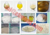17a-Methyl-1-Testosterone Testosterone Steroids Without Side Effects CAS 65-04-3