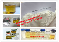 Oxymetholone Anadrol Oral Anabolic Steroids Bodybuilding To Male Growth 434-07-1