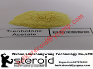 Yellow Powder Pharmaceutical Trenbolone Acetate Steroid  for Muscle Growth 10161-34-9