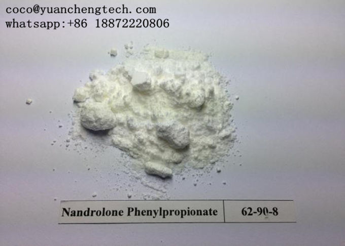 NPP Injectable Cutting Cycle Steroids Nandrolone DECA Durabolin Nandrolone Phenylpropionate