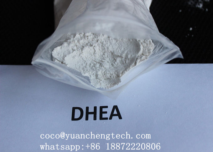 DHEA Raw Steroids Powder Dehydroisoandrosterone DHEA 53-43-0