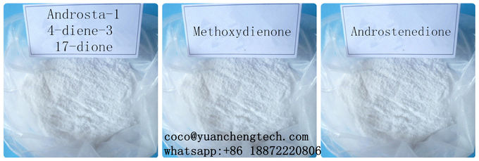 ADD Raw Steroid Powders Androsta-1,4-diene-3,17-dione 1,4-Androstadienedione 897-06-3